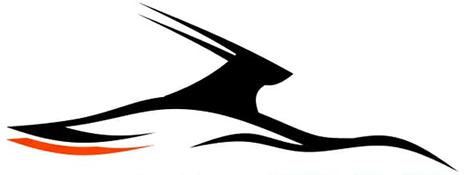 oryx-car